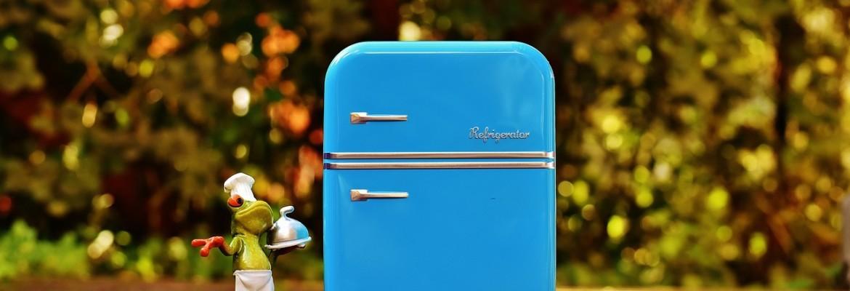 Холодильник на природе
